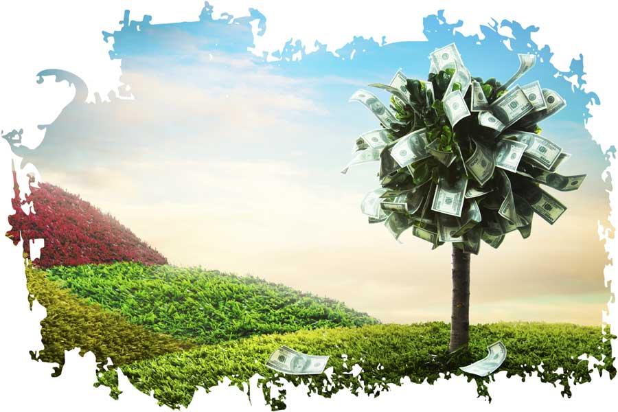 Geldbaum gegen geldprobleme