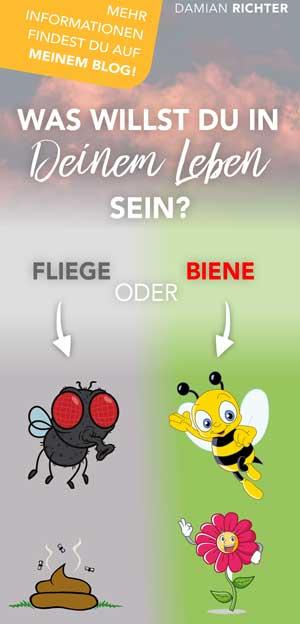 Biene Pinterest